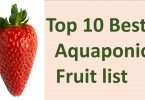 aquaponics fruit list