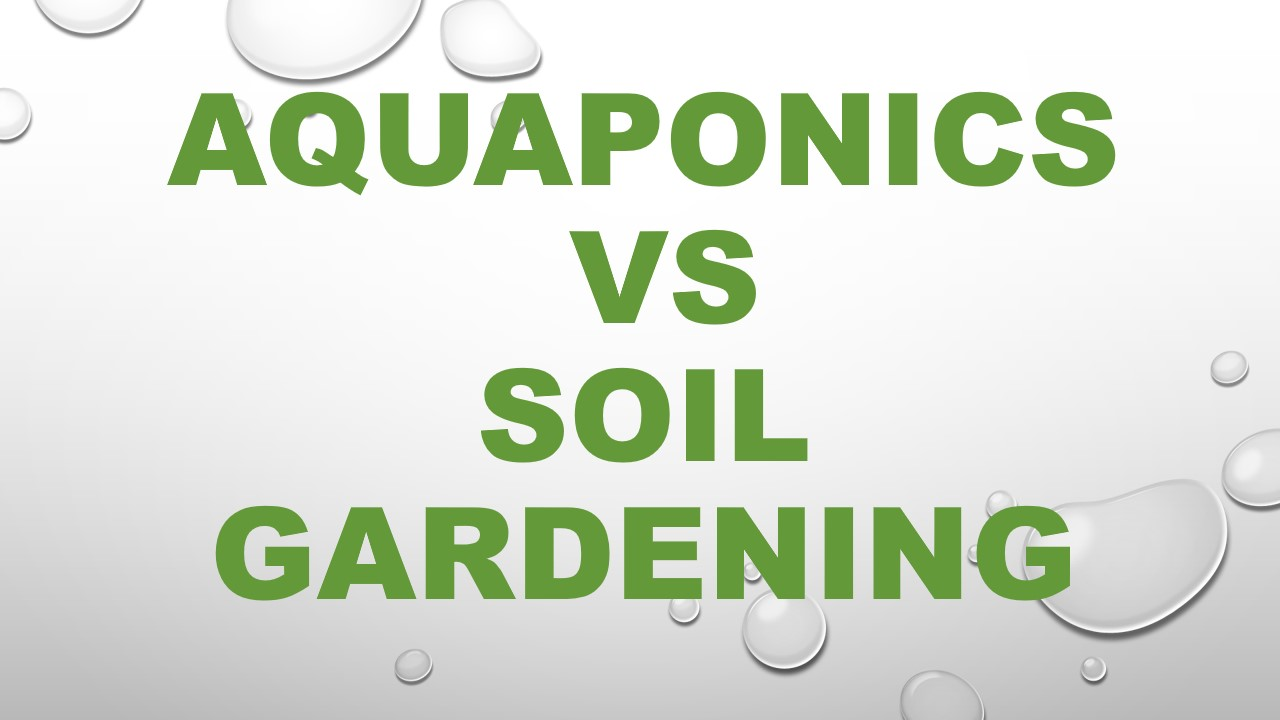 Aquaponics vs soil gardening why aquaponics is better for Garden soil definition